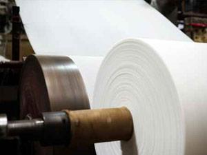papel celulosa